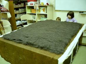 Photo: A karakul gyapjú is rákerült