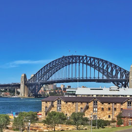 Sydney Icon by Victoria Keech - Novices Only Landscapes