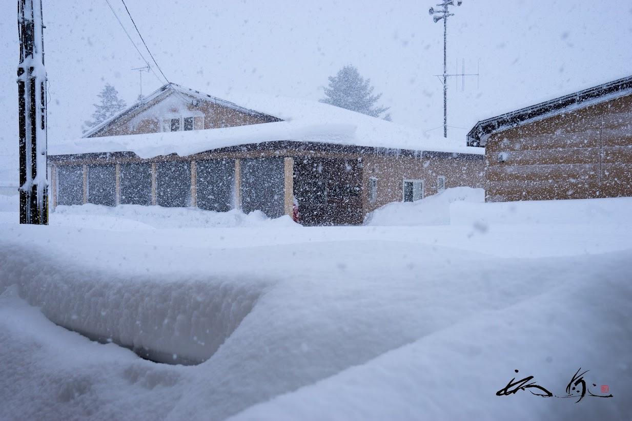 降り積もる雪・雪・雪。。。