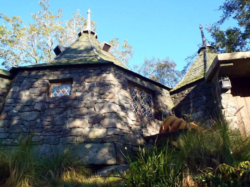 Photo: Hagrid's place