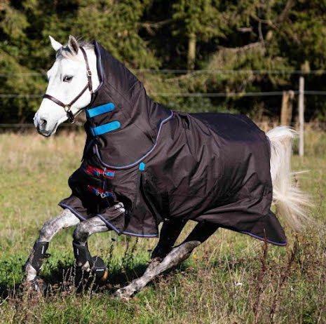 Shires Highlander Original 300g Rug & Neck Set
