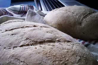 Photo: Con patatas y pan (agua y cereales) el estómago torna saciado, Lázaro