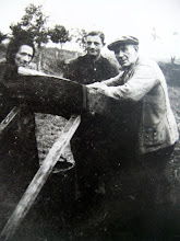 Photo: Jan Hilberts staat in het midden (1928). Hij was toen 16 jaar. Links en rechts bij de aardappelsorteer tafel staan het echtpaar Egbert en Grietje de Jonge (E17). Zij woonden toen in het huisje naast Piet Dekker bij de ingang van de Kerkweg. Albert Jipping geb. 11-11-1921, ging in die tijd in zijn jeugd zo rond 1932, met 7 cent op pad om zijn haar voor dat geld door vrouw De Jonge te laten knippen. Zij was barbierster aan huis kun je wel zeggen aldus Albert.