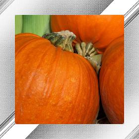 Pumpkin Photo Frames