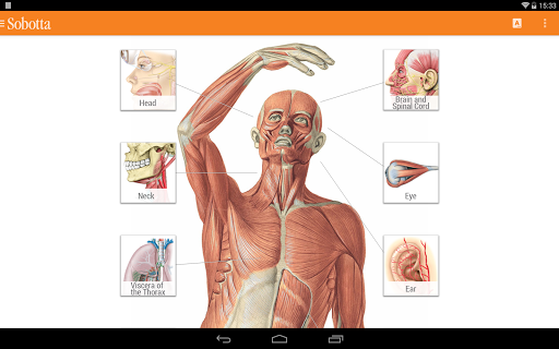 Sobotta Anatomy  Screenshots 8