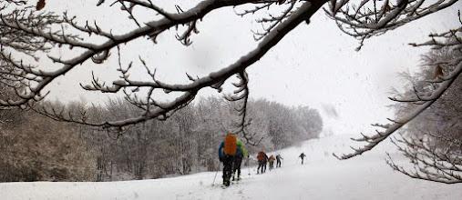 Photo: La neve prosegue la sua discesa