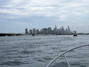 Photo: Year 2 Day 237 - The Gold Coast