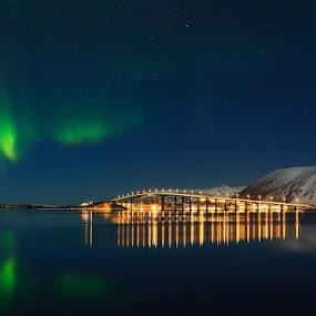 Aurora Borealis at Risøyhamn Norway. by Kenneth Pettersen - Landscapes Starscapes ( northen light., aurora borealis )
