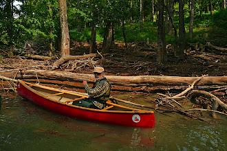 Photo: cumuli di legname spinti dalla corrente