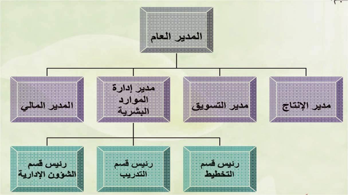 بحث جاهز حول تصنيف و انواع الهياكل التنظيمية