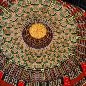 Dome by Keith Heinly - Buildings & Architecture Other Interior ( florida, dome, epcot, disney, china )