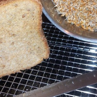 Essene Bread for the Bread Machine Recipe