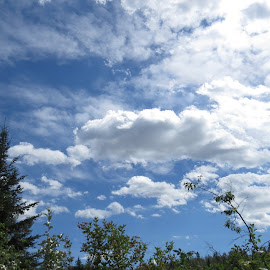 Touching the clouds by Rose McAllister - Landscapes Cloud Formations ( clouds, sky, nature, blue, trees )