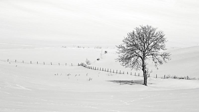 bianco paesaggio di rino_savastano
