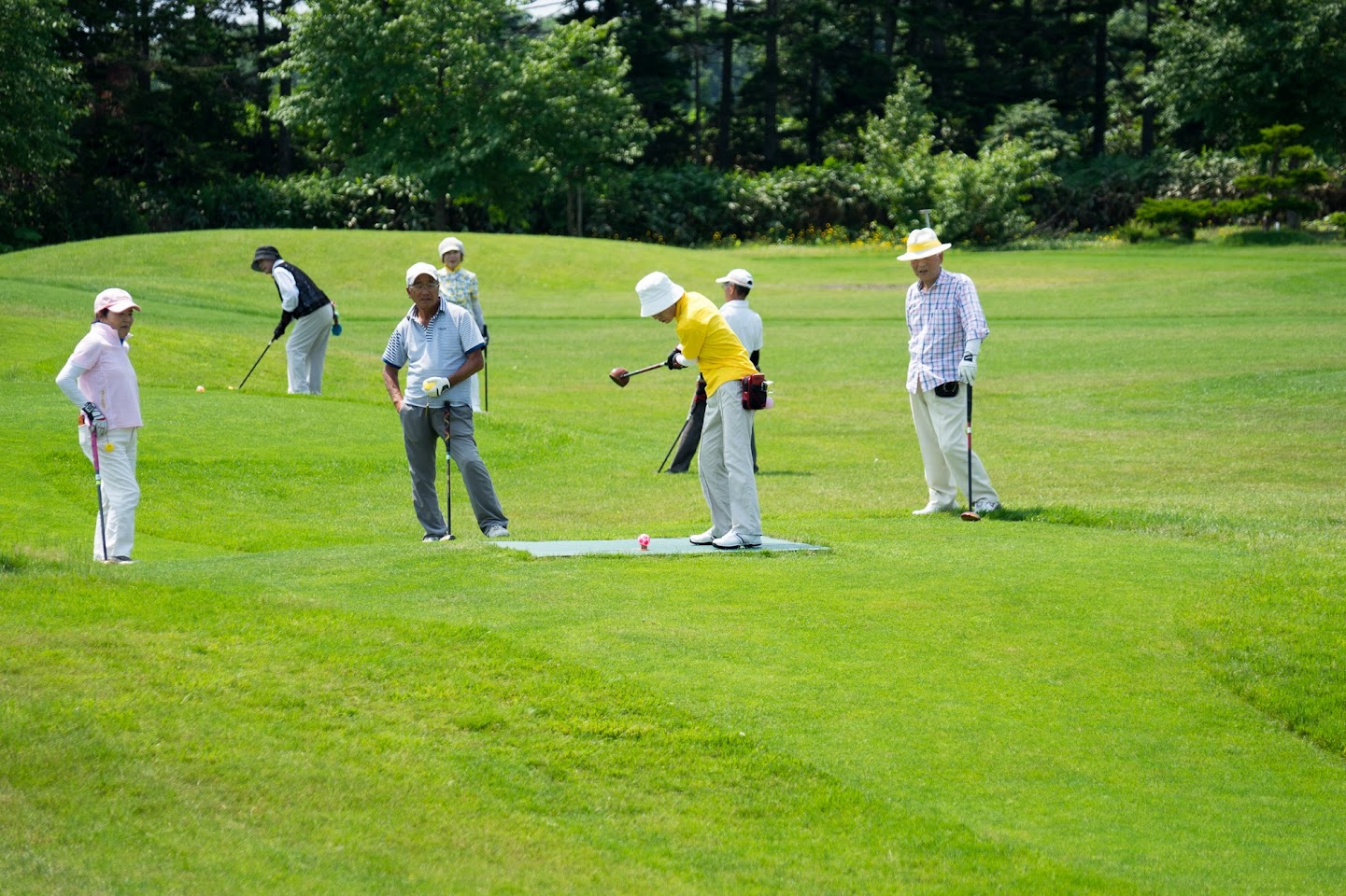 第15回空知地区老人クラブ連合会町対抗パークゴルフ北竜大会2017@北竜町ひまわりパークゴルフ場