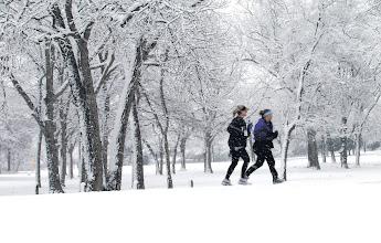 Photo: Runners