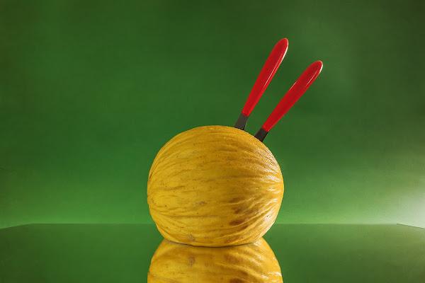 Yellow Melon di renzodid