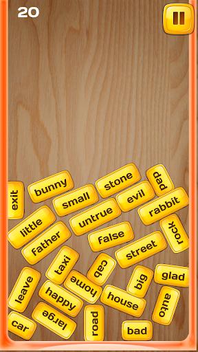 Word Blocks Pair Match