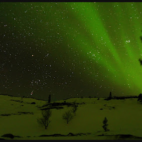 Aurora borealis, Kirkenes, Norway by James Rudick - Landscapes Starscapes ( aurora borealis, skyscape, norway, relax, tranquil, relaxing, tranquility )