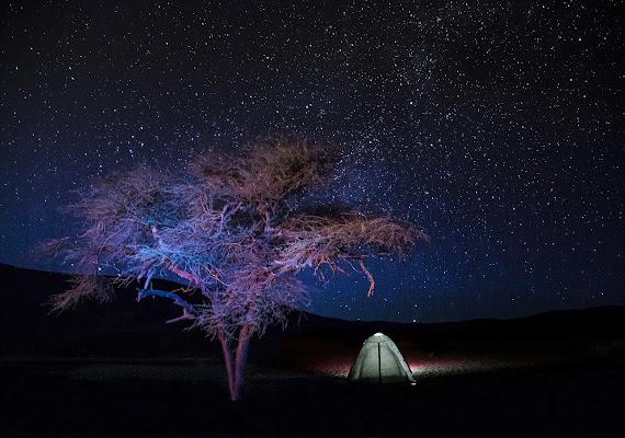 Nel buio della notte sprazzi di luce di meteorite