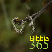 365 Bibbia