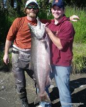 Photo: A bright Alaska king salmon, fresh from the ocean at the Kasilof.