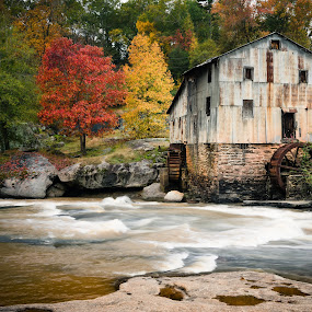Old Mill by Tom Moors - Buildings & Architecture Decaying & Abandoned ( water, mill, anderson mill, fall leaves, foliage, fall, grist mill, trees, south carolina, river )