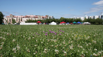 Photo: Fête de Planoise 2011