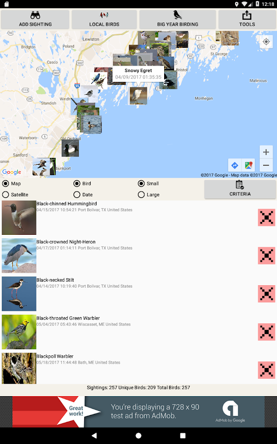Big Year Birding- screenshot