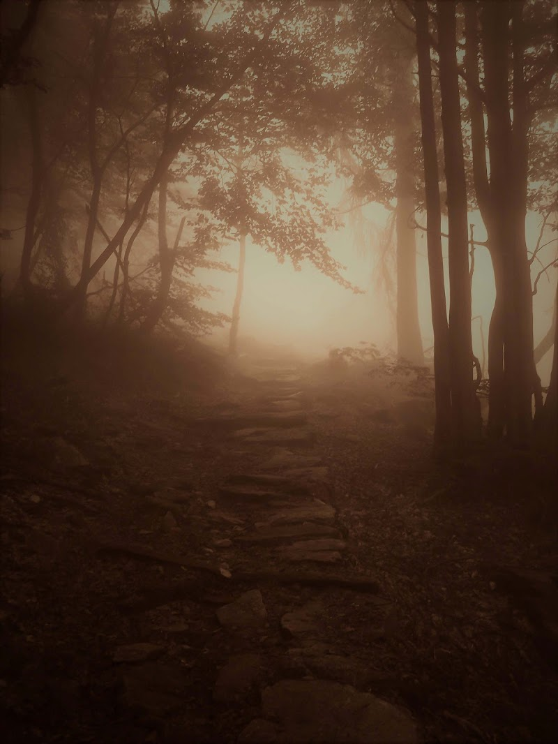 Il sentiero nella Terra di Mezzo di elibetta