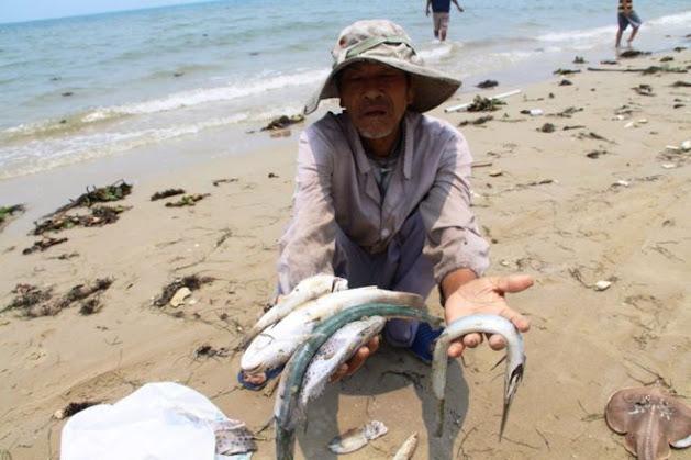 Việt Nam sẽ khó xử lý được bùn thải độc hại của Formosa?