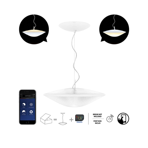Philips Hue Phoenix Suspension packaging image