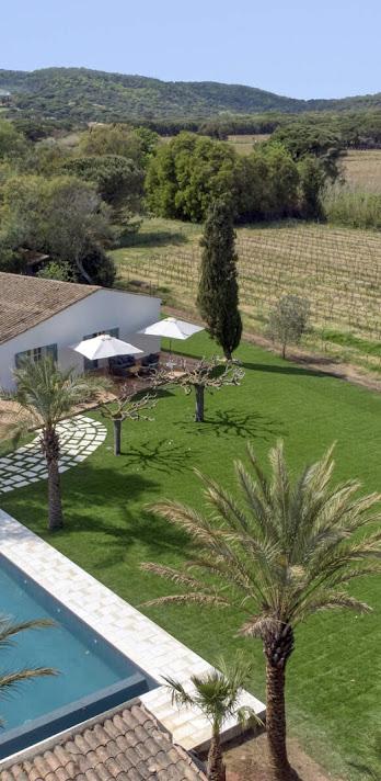 Villa in Vineyards_7