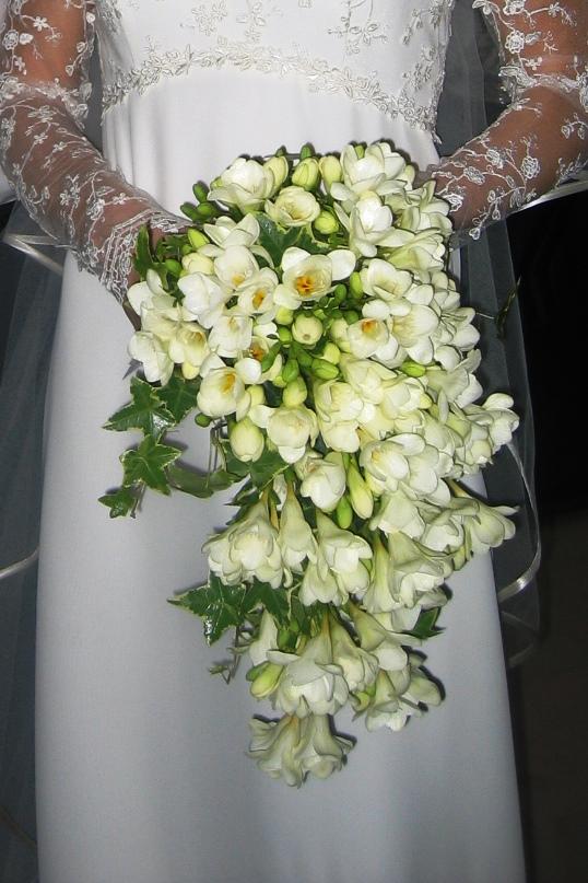 Il bouquet di scerda