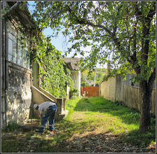 Photo: Str. Salinelor, Nr.15 - casa rurala - 2017.09.08
