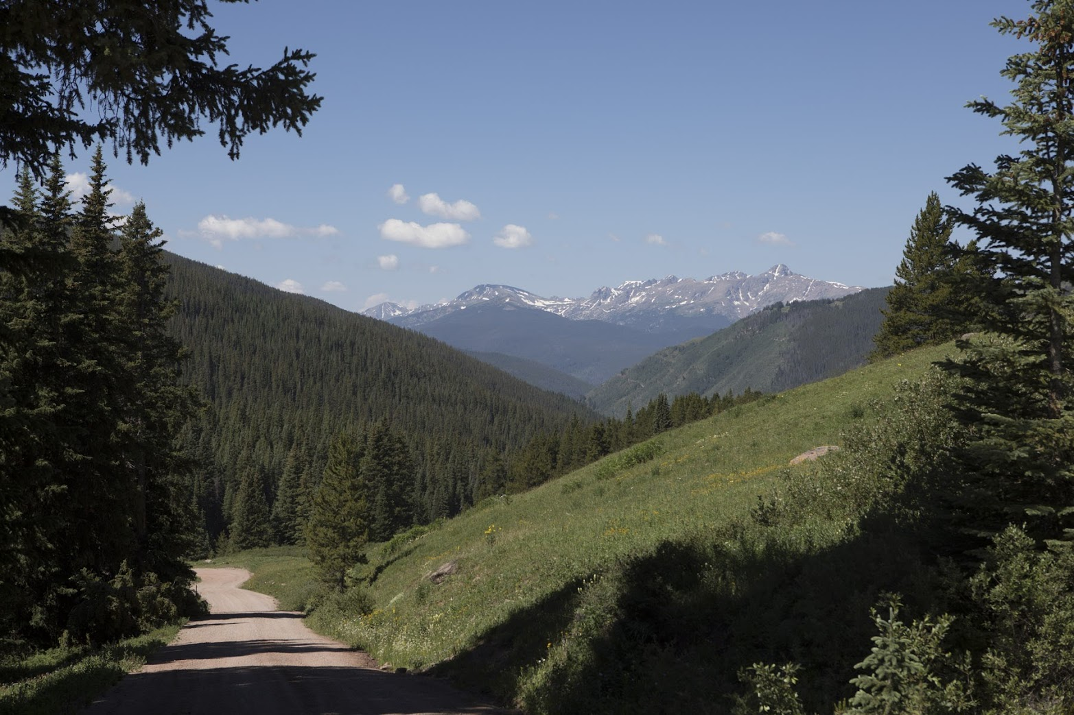 Mt of the Holy Cross (tallest peak at right) from Shrine Pass