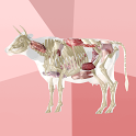 Beef Cuts 3D icon