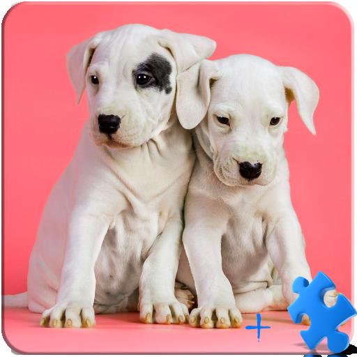 子犬ジグソーパズル+ LWP 休閒 App LOGO-硬是要APP
