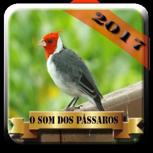 Cantos de pássaros HD 2017 - náhled