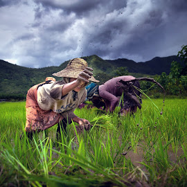 work by Arubam Meitei - People Portraits of Women ( hardwork, work, green, natural, women, labour )