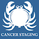TNM Cancer Staging(8th edition) Android apk