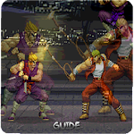 Hints Double Dragon icon