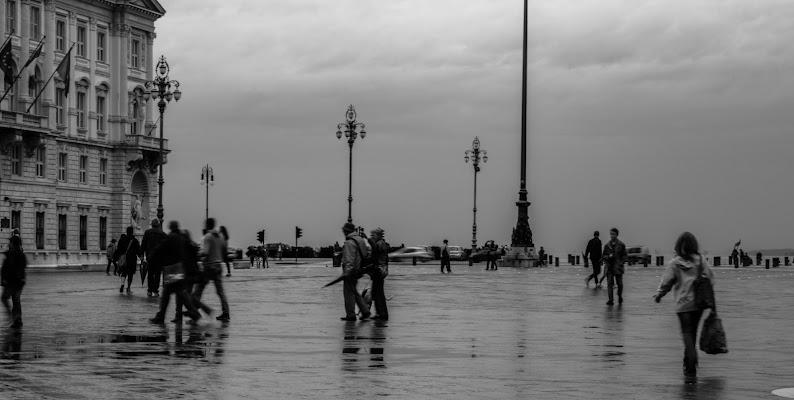 Piazza Unità d'Italia di Barbiani Paola