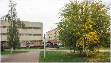Photo: Roșcovul - Ceratonia siliqua - Parcul Teilor - 2017.10.27
