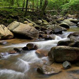 by Siniša Almaši - Nature Up Close Water ( view, rocks, nature, stream, light, cascade, stones, river, water )
