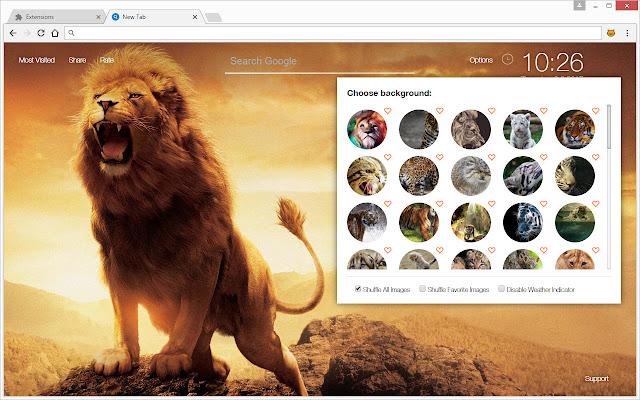 Wild Cats Wallpapers Hd Cat Lion Tiger Newtab
