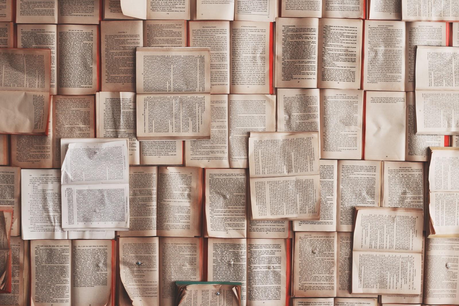 BIBLIOMANIA (A Guide To Bibliomania)