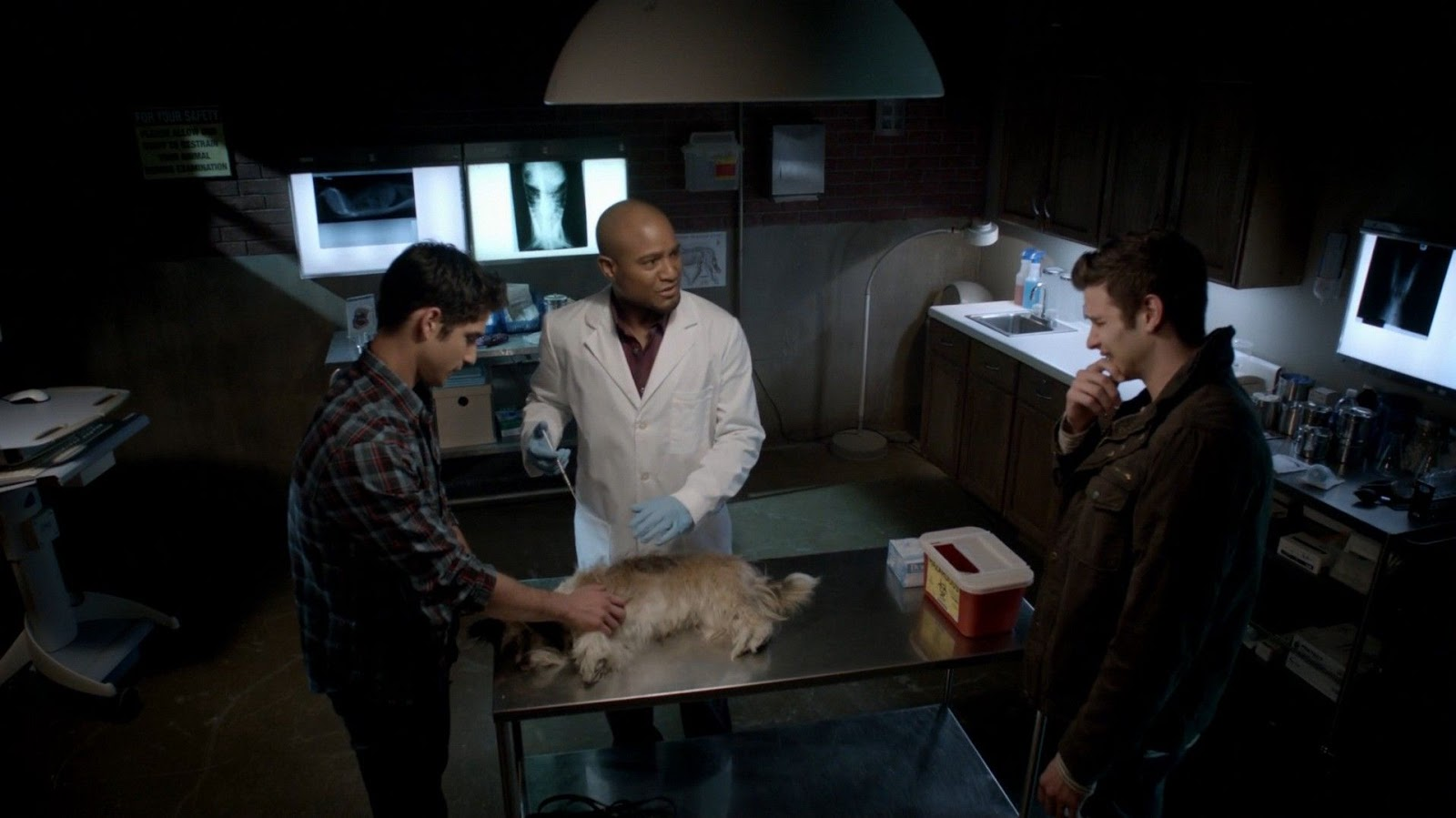Image result for animal doctor teen wolf