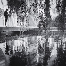 Wedding photographer Larisa Novak (novalovak). Photo of 11.04.2017