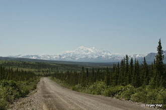 Photo: Denali Highway. Blick auf den Mount McKinley
